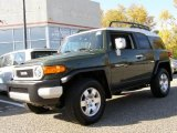 2010 Toyota FJ Cruiser Army Green