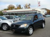 2010 Black Forest Pearl Toyota RAV4 I4 4WD #38917622