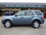 2010 Steel Blue Metallic Ford Escape XLT 4WD #38917738