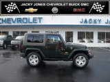 2010 Natural Green Pearl Jeep Wrangler Sahara 4x4 #38917895