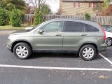 2007 Green Tea Metallic Honda CR-V EX-L #39006583