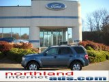 2010 Steel Blue Metallic Ford Escape XLT 4WD #39059320