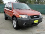 2006 Blazing Copper Metallic Ford Escape XLT V6 #39059633