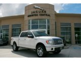 2010 Ford F150 Platinum SuperCrew 4x4