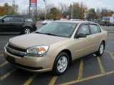 2005 Light Driftwood Metallic Chevrolet Malibu LS V6 Sedan #39149549