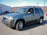 2006 Titanium Green Metallic Ford Escape XLT V6 4WD #3911468