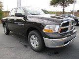 2011 Dodge Ram 1500 Rugged Brown Pearl