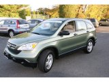 2008 Green Tea Metallic Honda CR-V LX 4WD #39325638