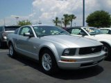 2009 Brilliant Silver Metallic Ford Mustang V6 Coupe #392537