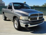 2002 Graphite Metallic Dodge Ram 1500 SLT Regular Cab #39431040