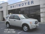 2009 Light Sage Metallic Ford Escape XLT #39503150