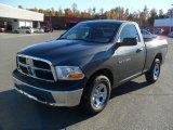 2011 Mineral Gray Metallic Dodge Ram 1500 ST Regular Cab #39503253