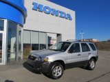 2006 Silver Metallic Ford Escape XLT 4WD #39597855