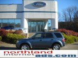 2010 Steel Blue Metallic Ford Escape XLT 4WD #39666570