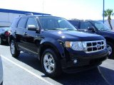 2009 Black Ford Escape XLT V6 #392574