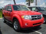 2009 Torch Red Ford Escape XLT V6 #392568