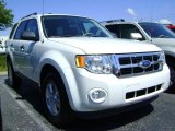 2009 White Suede Ford Escape XLT V6 #392602