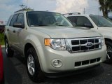 2009 Light Sage Metallic Ford Escape XLT #392595