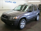 2006 Dark Shadow Grey Metallic Ford Escape XLT V6 4WD #39740005