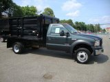 2007 Aspen Green Metallic Ford F550 Super Duty XL Regular Cab Dump Truck #39741164