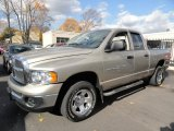 2004 Light Almond Pearl Dodge Ram 1500 ST Quad Cab 4x4 #40064506