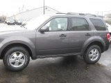 2011 Sterling Grey Metallic Ford Escape XLT 4WD #40064219