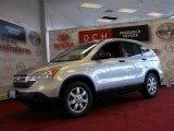 2009 Alabaster Silver Metallic Honda CR-V EX 4WD #40064634