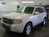 2009 White Suede Ford Escape Limited V6 4WD #40219383