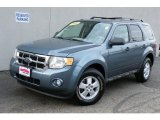 2010 Steel Blue Metallic Ford Escape XLT 4WD #40353157