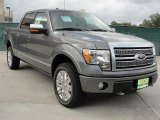 2010 Sterling Grey Metallic Ford F150 Platinum SuperCrew 4x4 #40410290