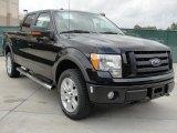 2010 Tuxedo Black Ford F150 Platinum SuperCrew 4x4 #40410293