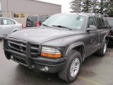 2003 Graphite Metallic Dodge Dakota Sport Regular Cab #40410832