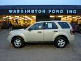 2009 Light Sage Metallic Ford Escape XLS 4WD #40479407