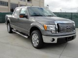 2010 Sterling Grey Metallic Ford F150 XLT SuperCrew #40479211