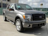 2010 Sterling Grey Metallic Ford F150 FX4 SuperCrew 4x4 #40479214