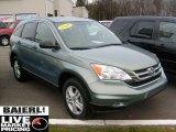 2010 Opal Sage Metallic Honda CR-V EX AWD #40551134
