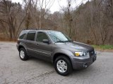 2006 Dark Shadow Grey Metallic Ford Escape Limited 4WD #40570947