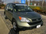 2009 Green Tea Metallic Honda CR-V LX 4WD #40711226