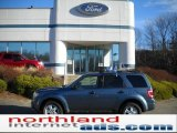 2010 Steel Blue Metallic Ford Escape XLT 4WD #40710717