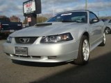 2001 Silver Metallic Ford Mustang GT Convertible #40755930