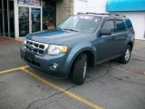 2010 Steel Blue Metallic Ford Escape XLT #40820486