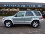 2006 Titanium Green Metallic Ford Escape Hybrid 4WD #40820924