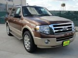2011 Golden Bronze Metallic Ford Expedition XLT #40879372