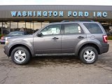 2011 Sterling Grey Metallic Ford Escape XLT V6 4WD #40962080