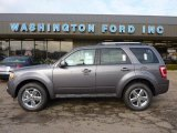 2011 Sterling Grey Metallic Ford Escape Limited V6 4WD #40962082
