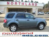 2010 Steel Blue Metallic Ford Escape XLT 4WD #41022947