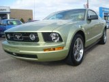 2006 Ford Mustang V6 Deluxe Coupe Data, Info and Specs