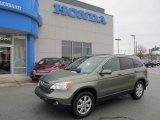 2008 Green Tea Metallic Honda CR-V EX-L 4WD #41068018