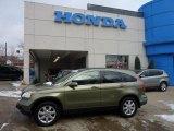 2008 Green Tea Metallic Honda CR-V EX-L 4WD #41111763