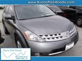 2006 Platinum Pearl Metallic Nissan Murano SL #41111894